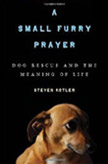 sm_furry_prayer_cover